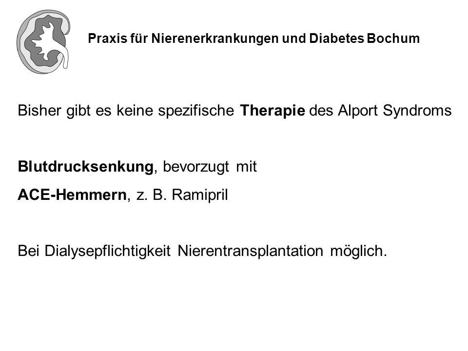 Praxis für Nierenerkrankungen und Diabetes Bochum Bisher gibt es keine spezifische Therapie des Alport Syndroms Blutdrucksenkung, bevorzugt mit ACE-He