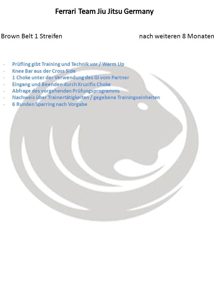 Brown Belt 1 Streifen nach weiteren 8 Monaten -Prüfling gibt Training und Technik vor / Warm Up -Knee Bar aus der Cross Side -1 Choke unter der Verwendung des Gi vom Partner -Eingang und Beenden durch Kruzifix Choke -Abfrage des vorgehenden Prüfungsprogramms -Nachweis über Trainertätigkeiten / gegebene Trainingseinheiten -6 Runden Sparring nach Vorgabe