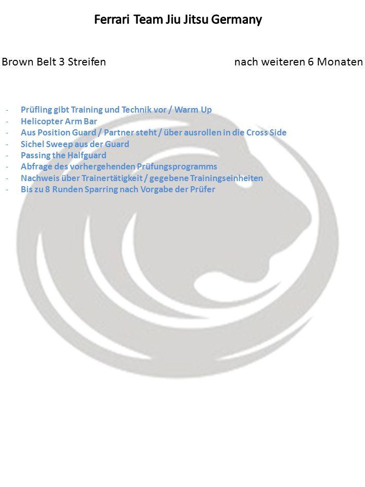 Brown Belt 3 Streifen nach weiteren 6 Monaten -Prüfling gibt Training und Technik vor / Warm Up -Helicopter Arm Bar -Aus Position Guard / Partner steht / über ausrollen in die Cross Side -Sichel Sweep aus der Guard -Passing the Halfguard -Abfrage des vorhergehenden Prüfungsprogramms -Nachweis über Trainertätigkeit / gegebene Trainingseinheiten -Bis zu 8 Runden Sparring nach Vorgabe der Prüfer