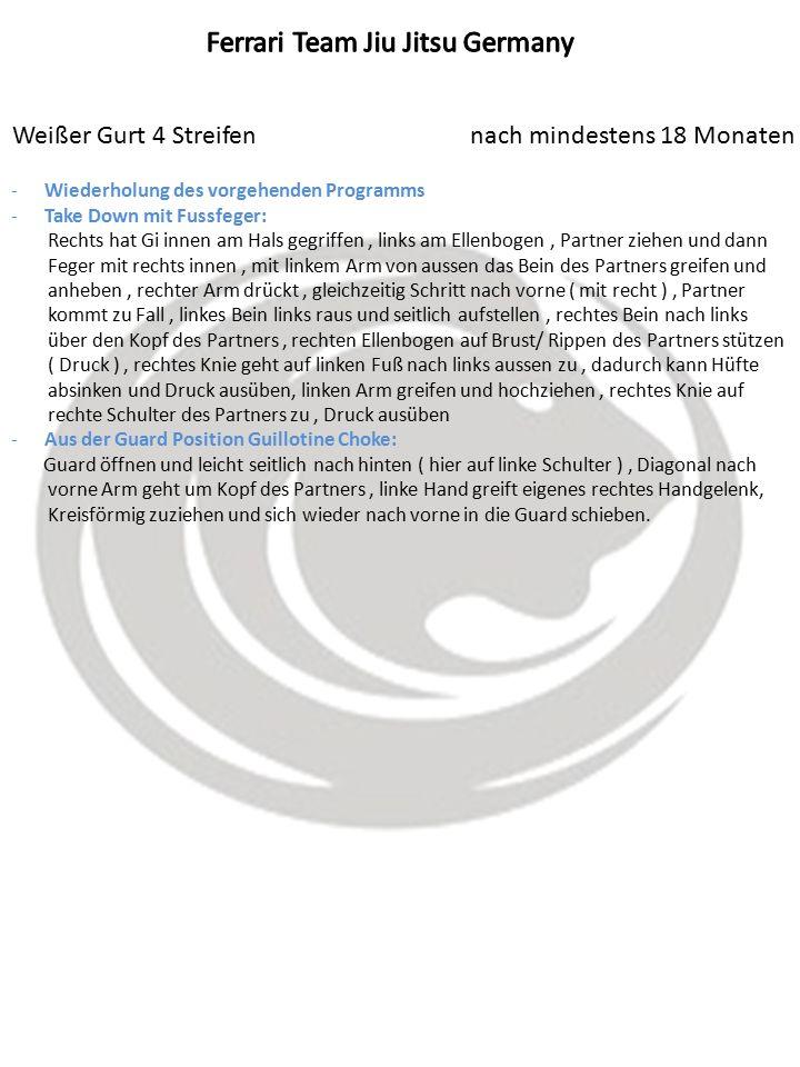 Weißer Gurt 4 Streifen nach mindestens 18 Monaten -Wiederholung des vorgehenden Programms -Take Down mit Fussfeger: Rechts hat Gi innen am Hals gegrif