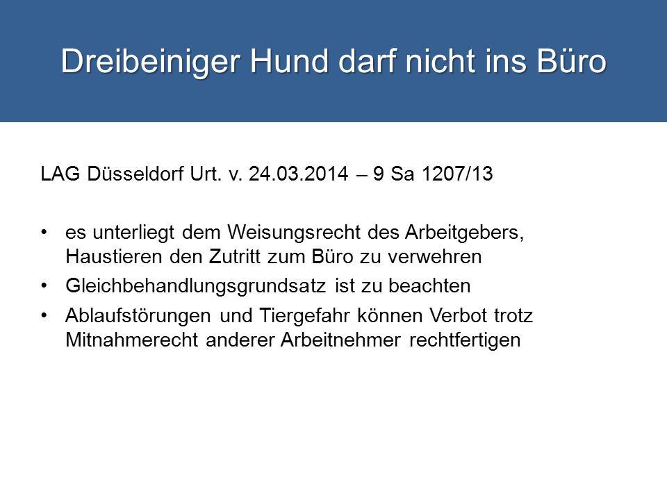 Dreibeiniger Hund darf nicht ins Büro LAG Düsseldorf Urt.