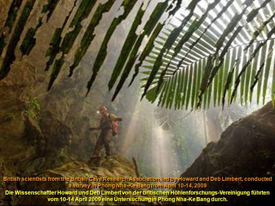 Collapsed doline -mini jungle one quarter mile below the surface Eingestürzte Doline – ein Mini-Dschungel 400 m unter der Erde........................................................