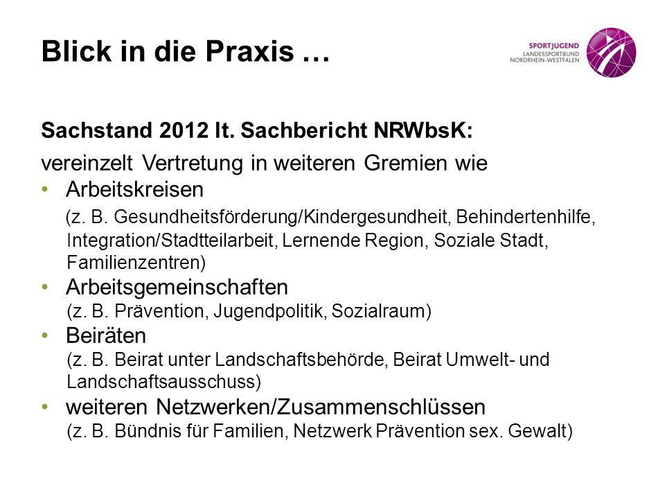 Sachstand 2012 lt. Sachbericht NRWbsK: vereinzelt Vertretung in weiteren Gremien wie Arbeitskreisen (z. B. Gesundheitsförderung/Kindergesundheit, Behi