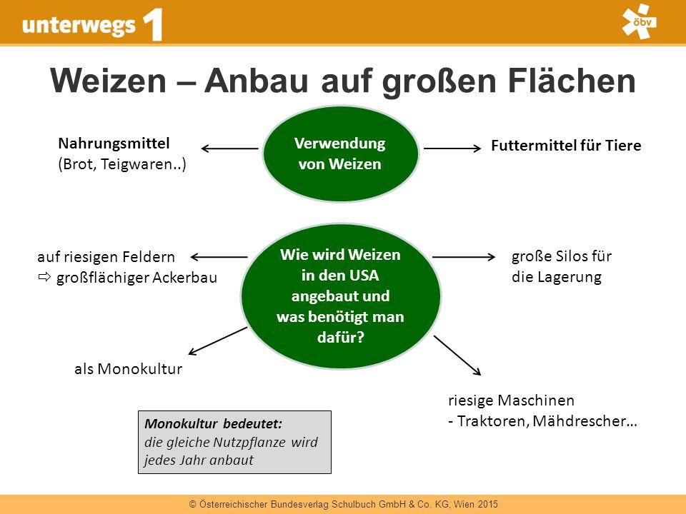 © Österreichischer Bundesverlag Schulbuch GmbH & Co. KG, Wien 2015 Weizen – Anbau auf großen Flächen Verwendung von Weizen Nahrungsmittel (Brot, Teigw