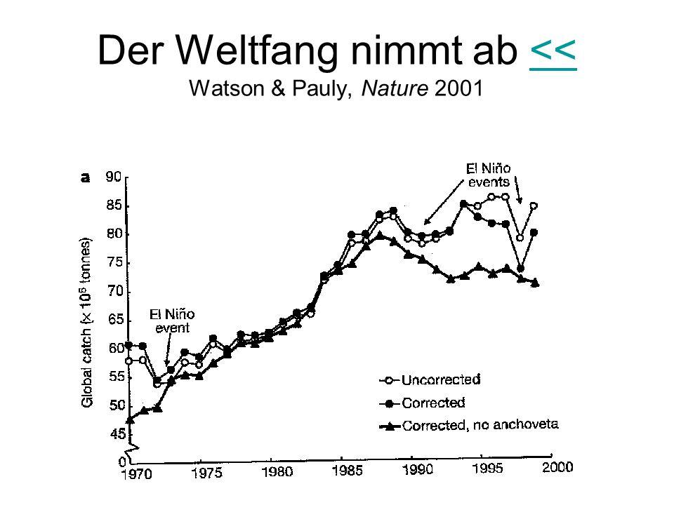 Der Weltfang nimmt ab << Watson & Pauly, Nature 2001<<