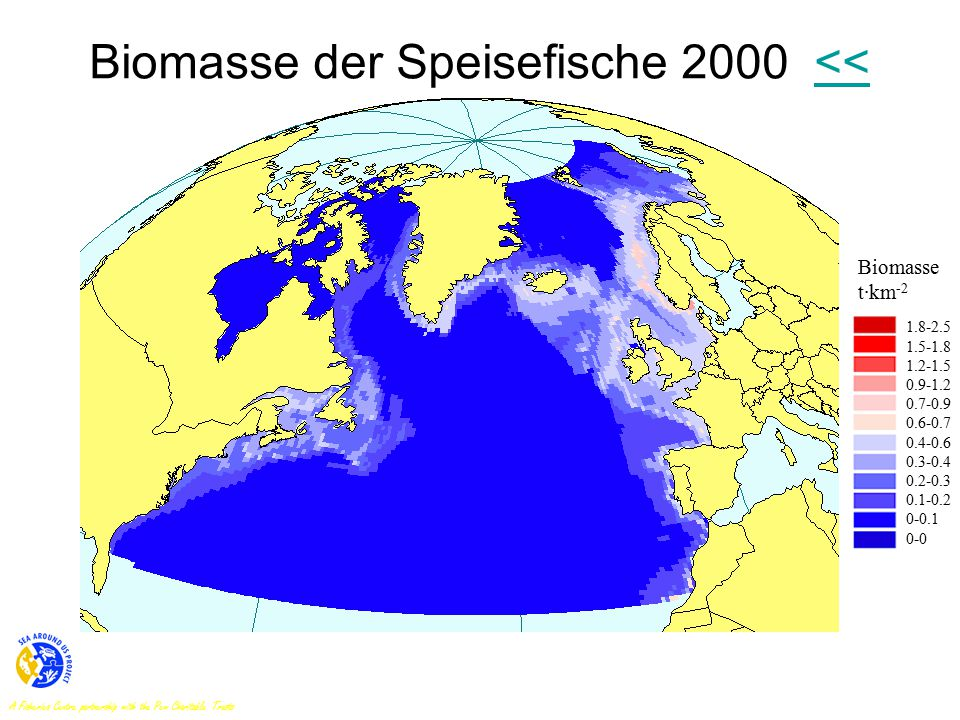 Biomasse der Speisefische 2000 <<<< Biomasse t·km -2 1.8-2.5 1.5-1.8 1.2-1.5 0.9-1.2 0.7-0.9 0.6-0.7 0.4-0.6 0.3-0.4 0.2-0.3 0.1-0.2 0-0.1 0-0 A Fisheries Centre partnership with the Pew Charitable Trusts