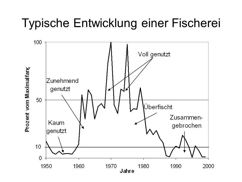 FAO Fänge 1951-1998 ?