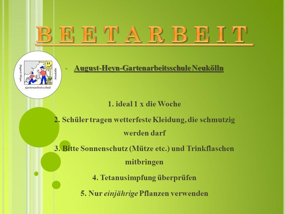 August-Heyn-Gartenarbeitsschule Neukölln August-Heyn-Gartenarbeitsschule Neukölln 1. ideal 1 x die Woche 2. Schüler tragen wetterfeste Kleidung, die s