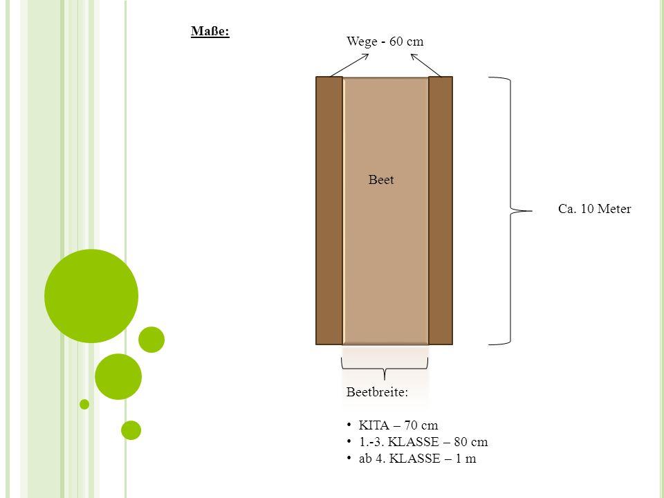 Ca. 10 Meter Beetbreite: KITA – 70 cm 1.-3. KLASSE – 80 cm ab 4. KLASSE – 1 m Beet Wege - 60 cm Maße: