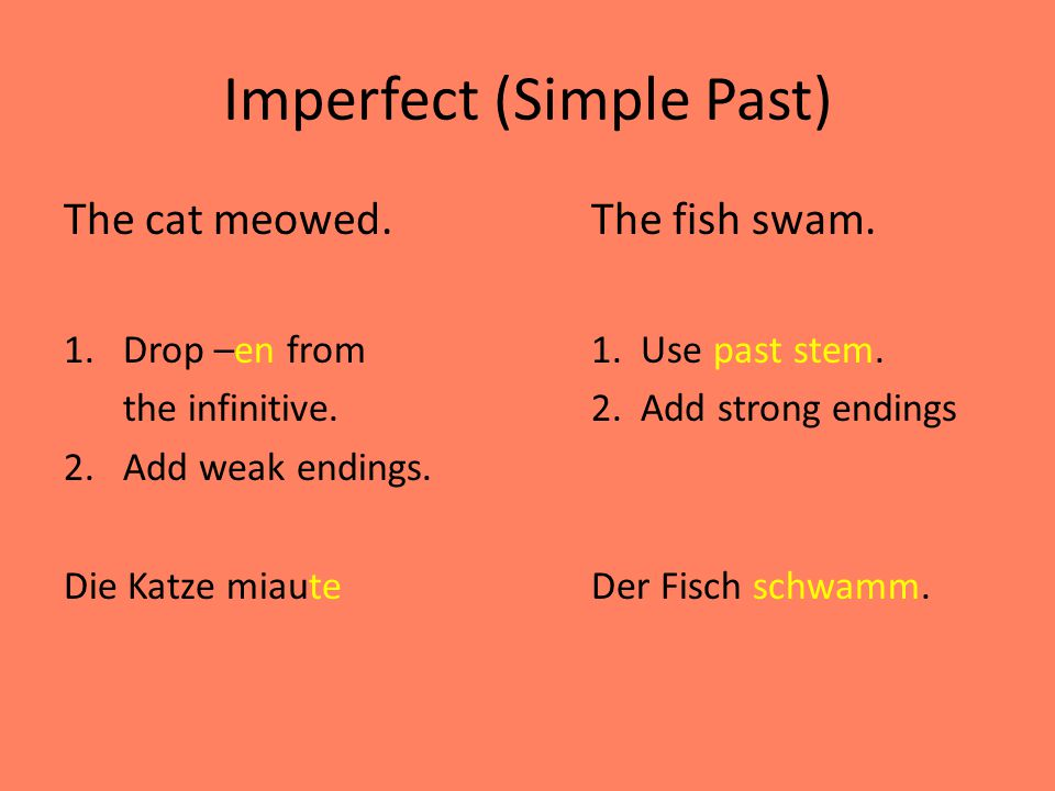 Imperfect (Simple Past) The cat meowed.The fish swam.