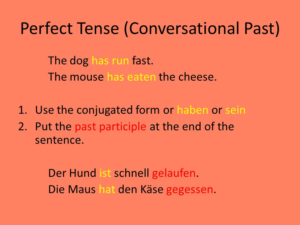 Perfect Tense (Conversational Past) The dog has run fast.