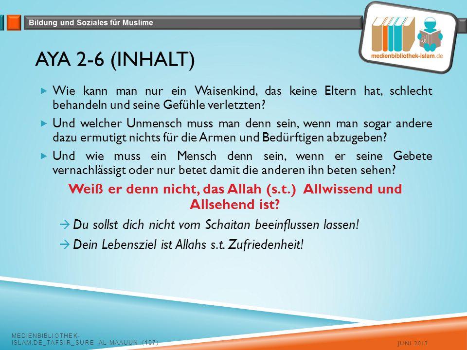 AYA 2-6 (INHALT)  Wie kann man nur ein Waisenkind, das keine Eltern hat, schlecht behandeln und seine Gefühle verletzten.