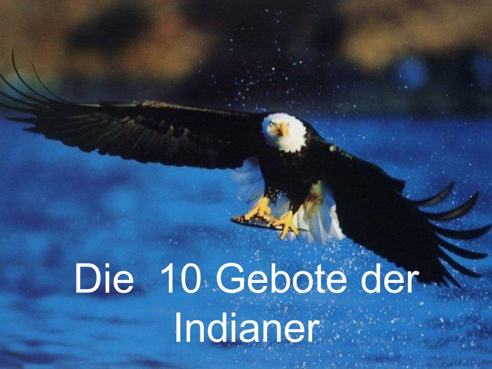 Die 10 Gebote der Indianer