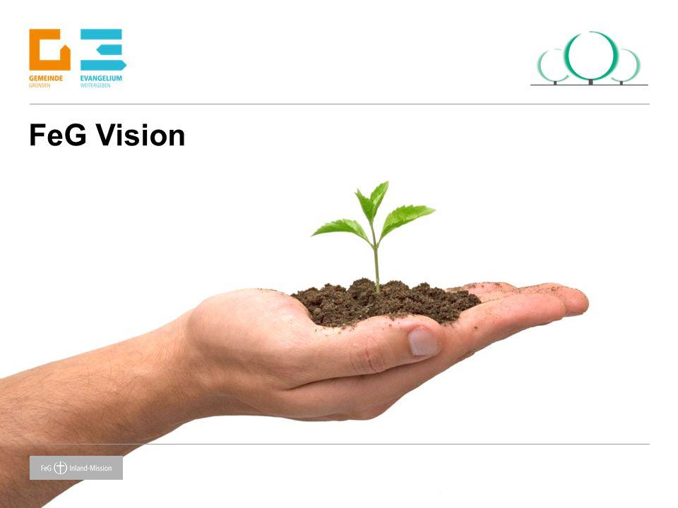 FeG Vision