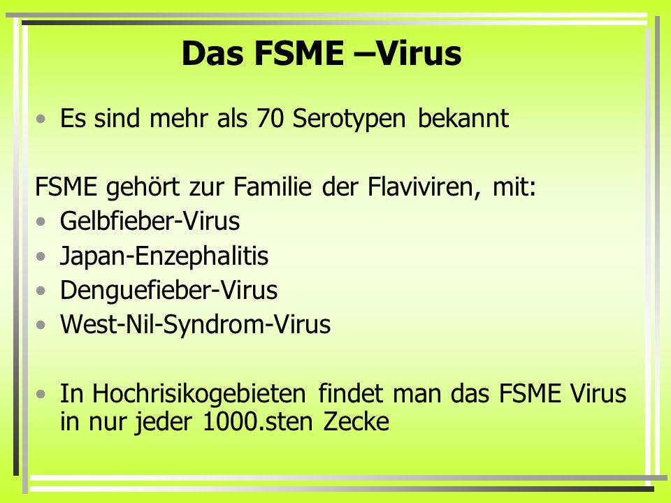 Natürliche Immunität auf FSME 0,1% der Zecken weisen FSME auf Das Erkrankungs-Risiko liegt dann bei 10- 30%, wenn man von einer FSME-Zecke gestochen wird Selbst in Risikogebieten haben nur 0,5 – 6% der Bevölkerung Antikörper gegen FSME- Viren Und damit eine lebenslange Immunität