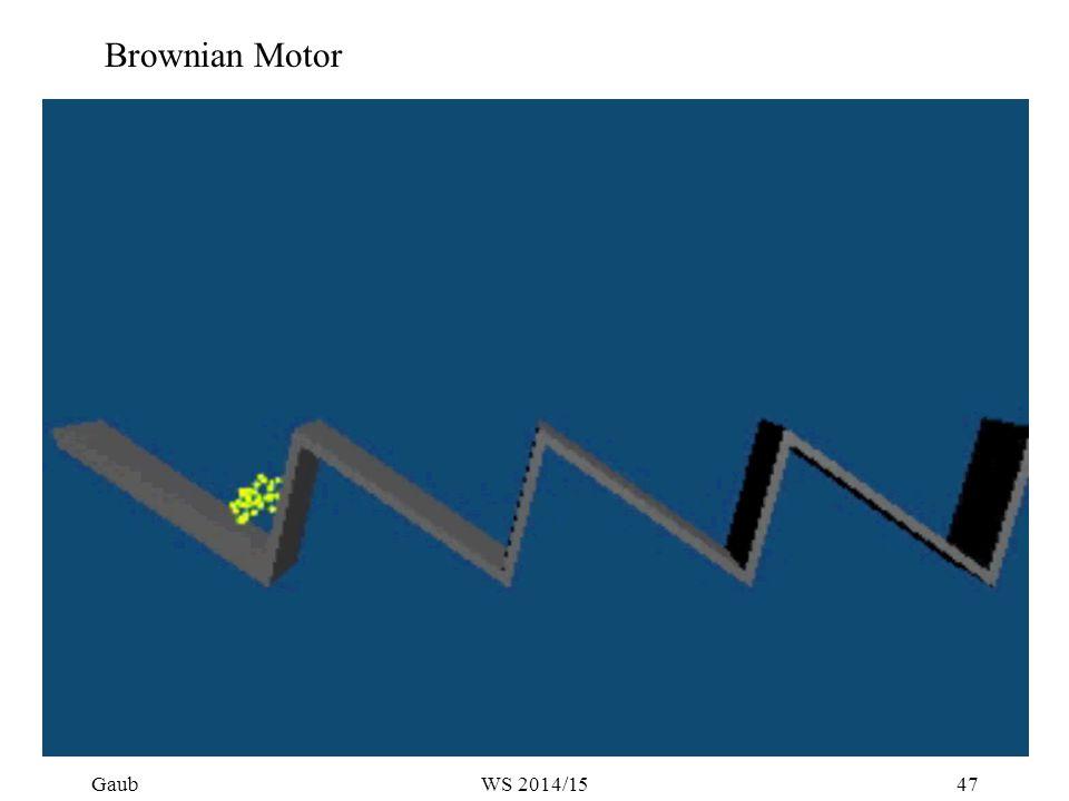 Brownian Motor Gaub47WS 2014/15