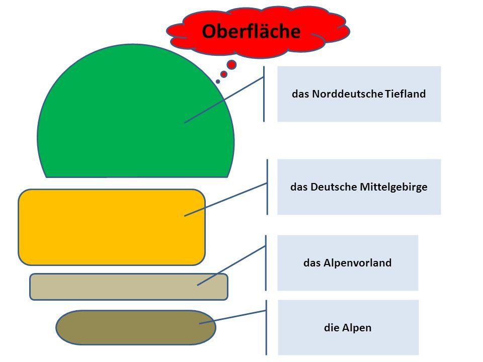 das Norddeutsche Tiefland das Deutsche Mittelgebirge das Alpenvorland die Alpen Oberfläche