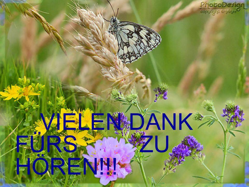 VIELEN DANK FÜRS ZU HÖREN!!!