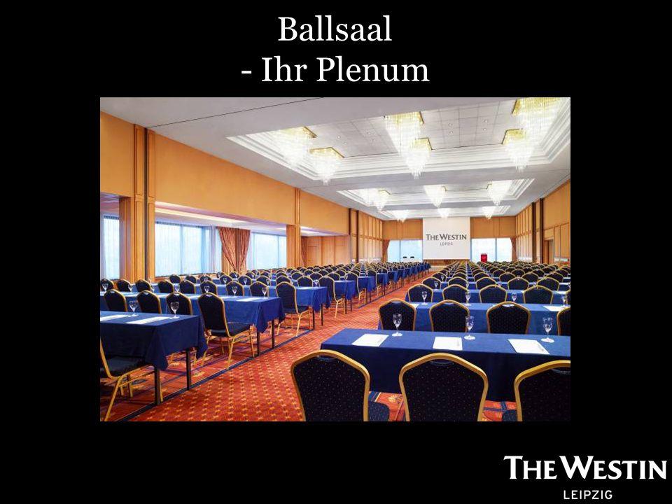Ballsaal - Ihr Plenum