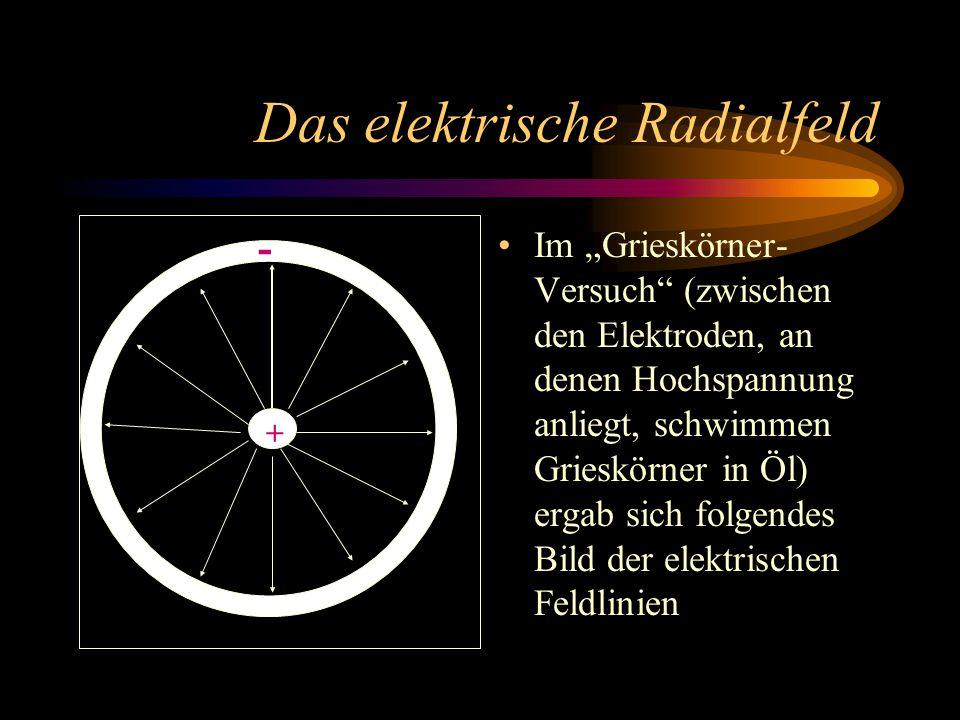 """Das elektrische Radialfeld Im """"Grieskörner- Versuch (zwischen den Elektroden, an denen Hochspannung anliegt, schwimmen Grieskörner in Öl) ergab sich folgendes Bild der elektrischen Feldlinien + -"""