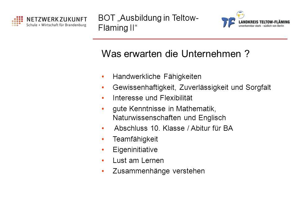 """BOT """"Ausbildung in Teltow- Fläming II"""" Was erwarten die Unternehmen ? Handwerkliche Fähigkeiten Gewissenhaftigkeit, Zuverlässigkeit und Sorgfalt Inter"""