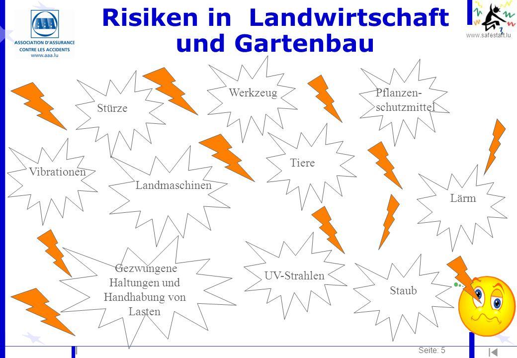 www.safestart.lu Seite: 5 Risiken in Landwirtschaft und Gartenbau VibrationenPflanzen- schutzmittel StürzeWerkzeug Gezwungene Haltungen und Handhabung von Lasten Landmaschinen Tiere UV-Strahlen Staub Lärm