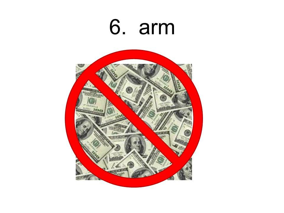6. arm