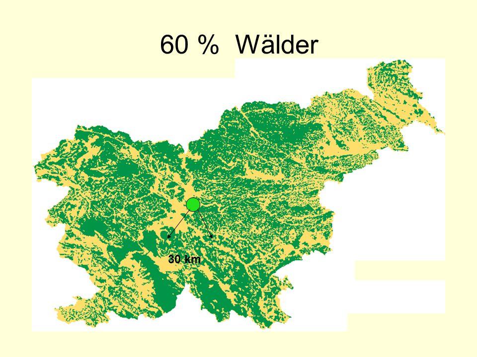 60 % Wälder 30 km