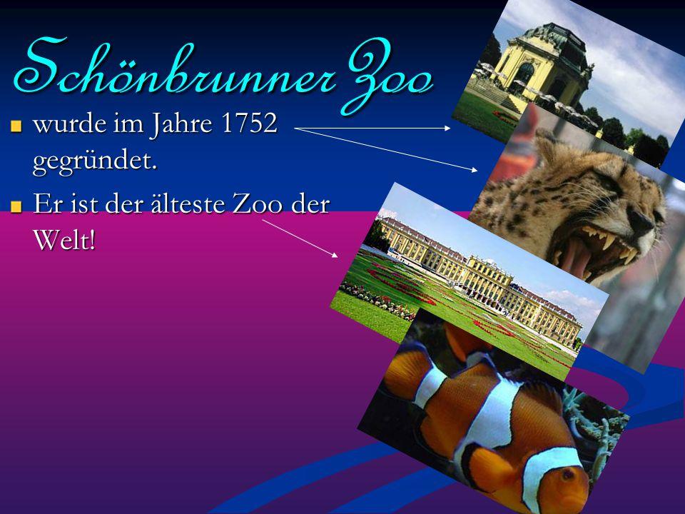 SchönbrunnerZoo wurde im Jahre 1752 gegründet. Er ist der älteste Zoo der Welt!