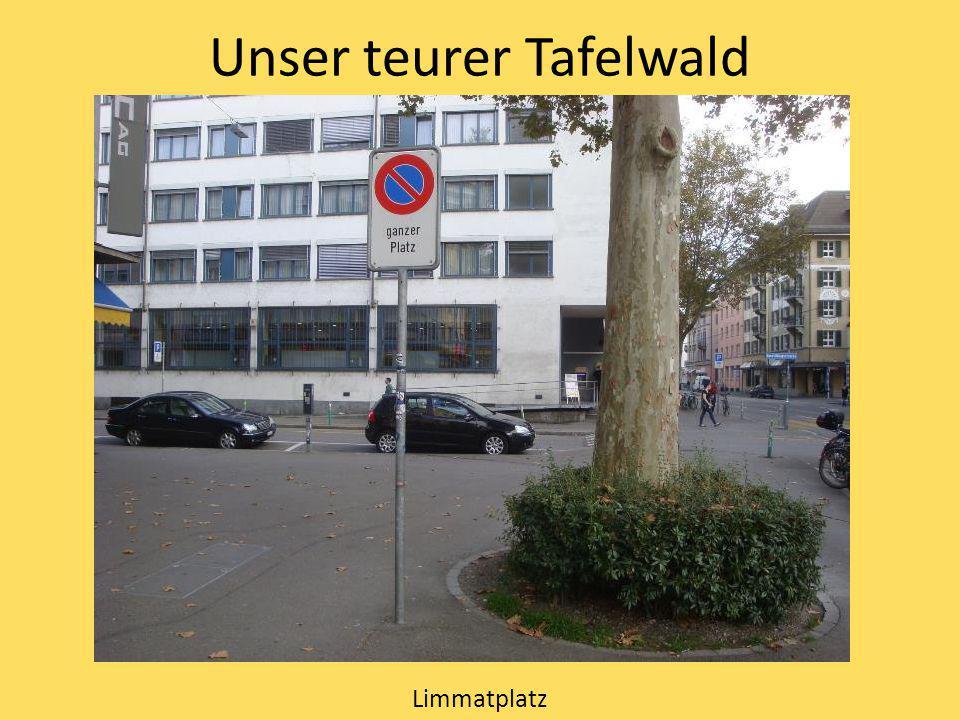 Unser teurer Tafelwald Limmatplatz