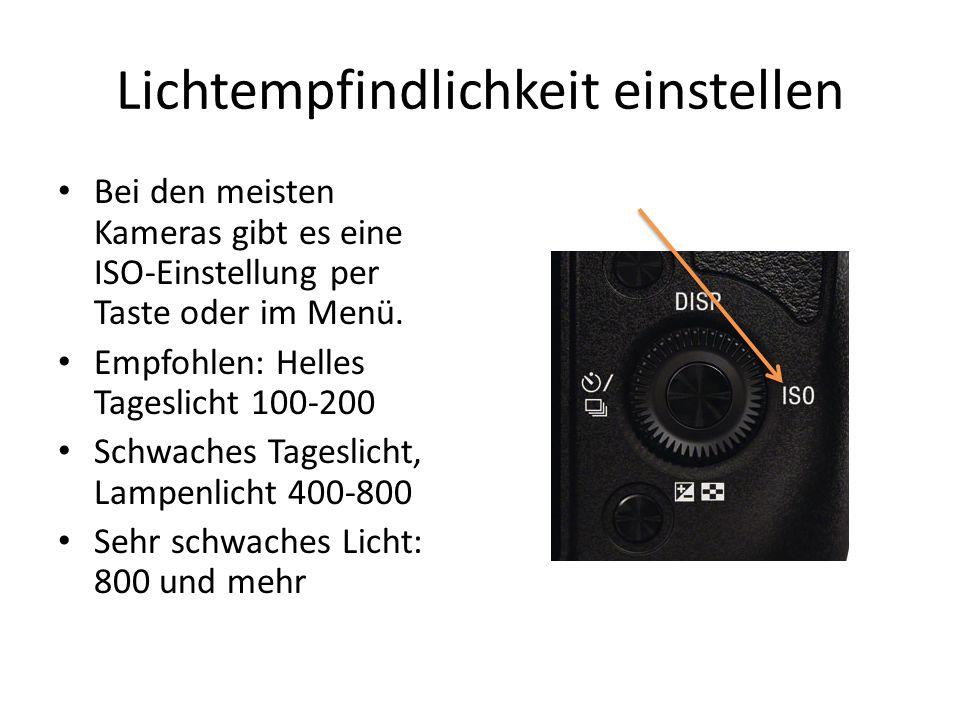 Lichtempfindlichkeit einstellen Bei den meisten Kameras gibt es eine ISO-Einstellung per Taste oder im Menü.
