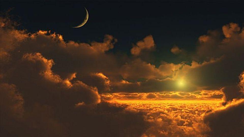 Wie die Sonne nur durch die Überlegenheit ihrer Anziehungskraft die Planeten in ihre Bahnen zwingt, so herrscht der Genius nur durch die immanente Sch