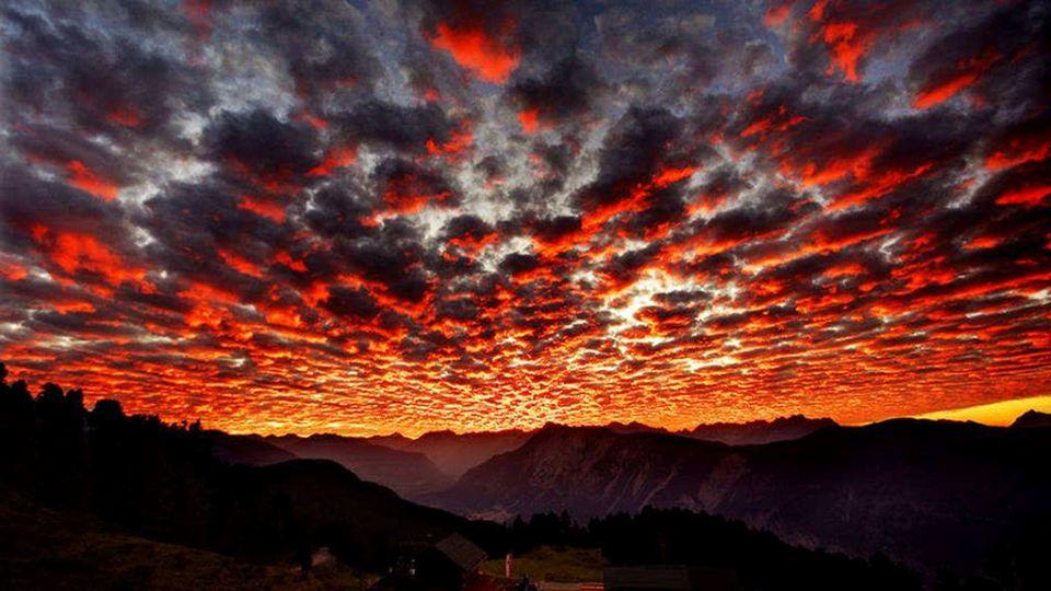 Ich selbst muß Sonne sein: ich muß mit meinen Strahlen Das farbenlose Meer der ganzen Gottheit malen. Angelus Silesius