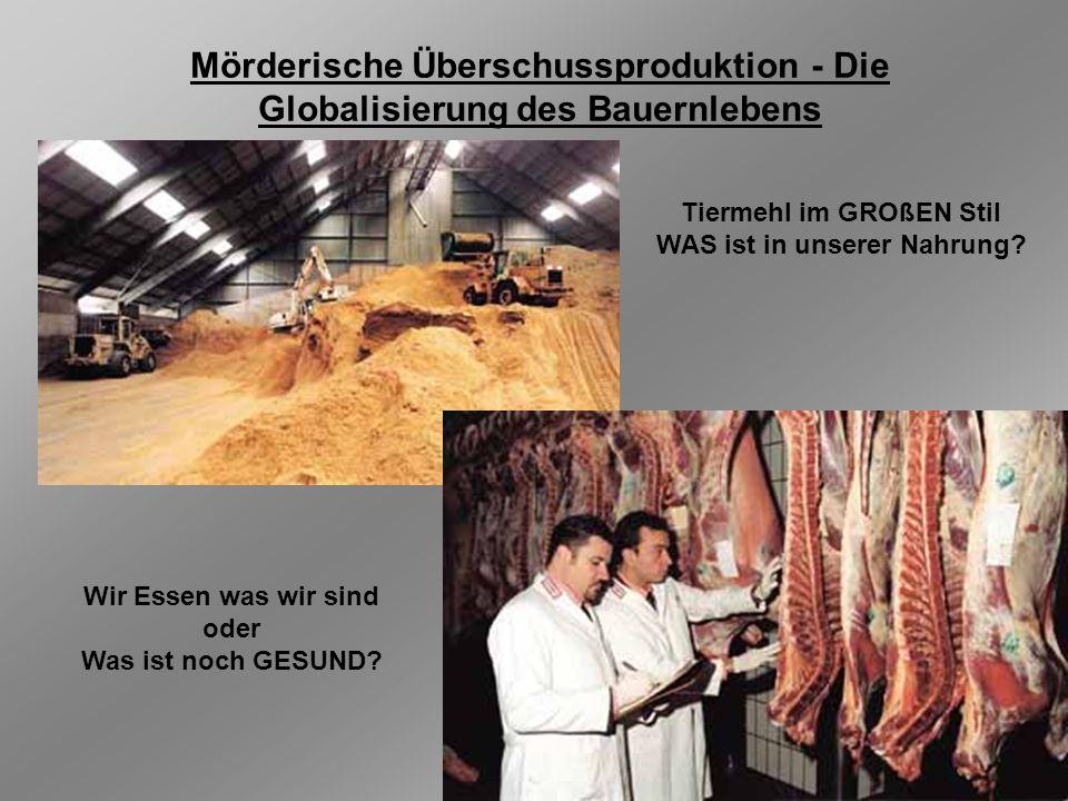 Mörderische Überschussproduktion - Die Globalisierung des Bauernlebens Tiermehl im GROßEN Stil WAS ist in unserer Nahrung? Wir Essen was wir sind oder