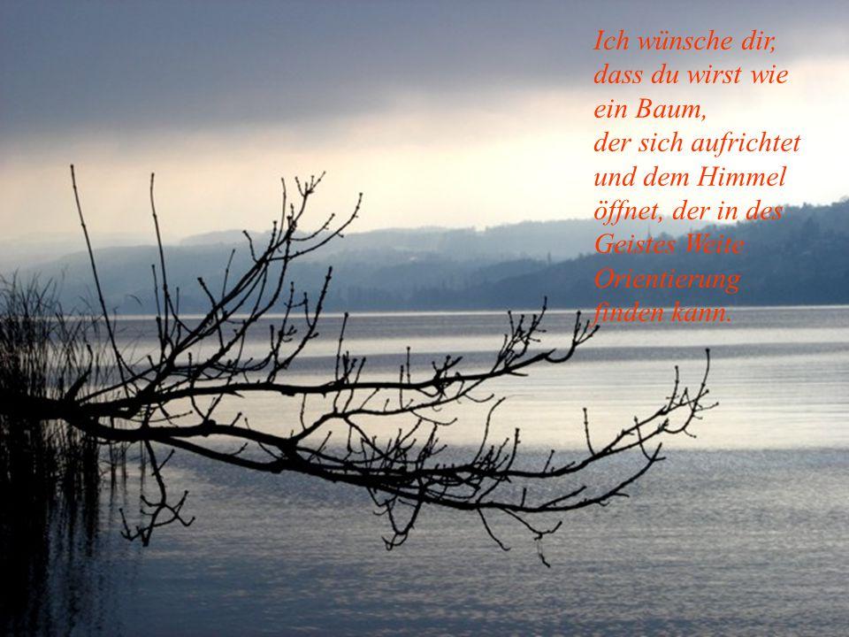 Ich wünsche dir, dass du wirst wie ein Baum, der sich aufrichtet und dem Himmel öffnet, der in des Geistes Weite Orientierung finden kann.