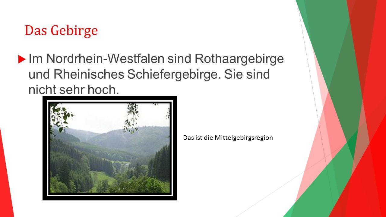 Das Gebirge  Im Nordrhein-Westfalen sind Rothaargebirge und Rheinisches Schiefergebirge. Sie sind nicht sehr hoch. Das ist die Mittelgebirgsregion