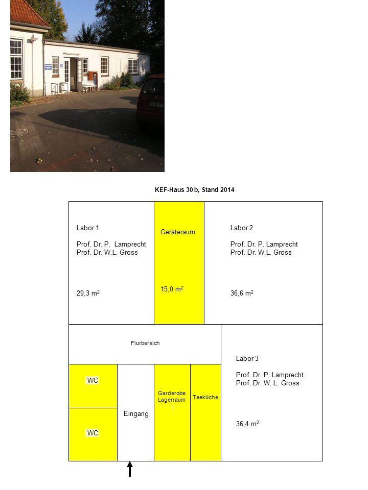 KEF-Haus 30 b, Stand 2014 WC Eingang Labor 3 Prof. Dr. P. Lamprecht Prof. Dr. W. L. Gross 36,4 m 2 Labor 2 Prof. Dr. P. Lamprecht Prof. Dr. W.L. Gross