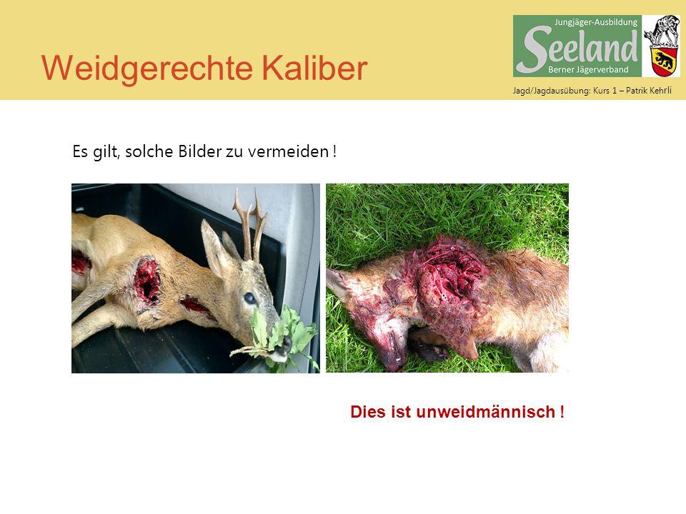 Jagd/Jagdausübung: Kurs 1 – Patrik Keh rli Weidgerechte Kaliber Es gilt, solche Bilder zu vermeiden ! Dies ist unweidmännisch !