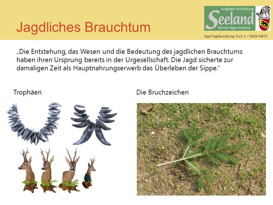 Jagd/Jagdausübung: Kurs 1 – Patrik Keh rli Jagdliches Brauchtum Strecke verblasen Strecke legen