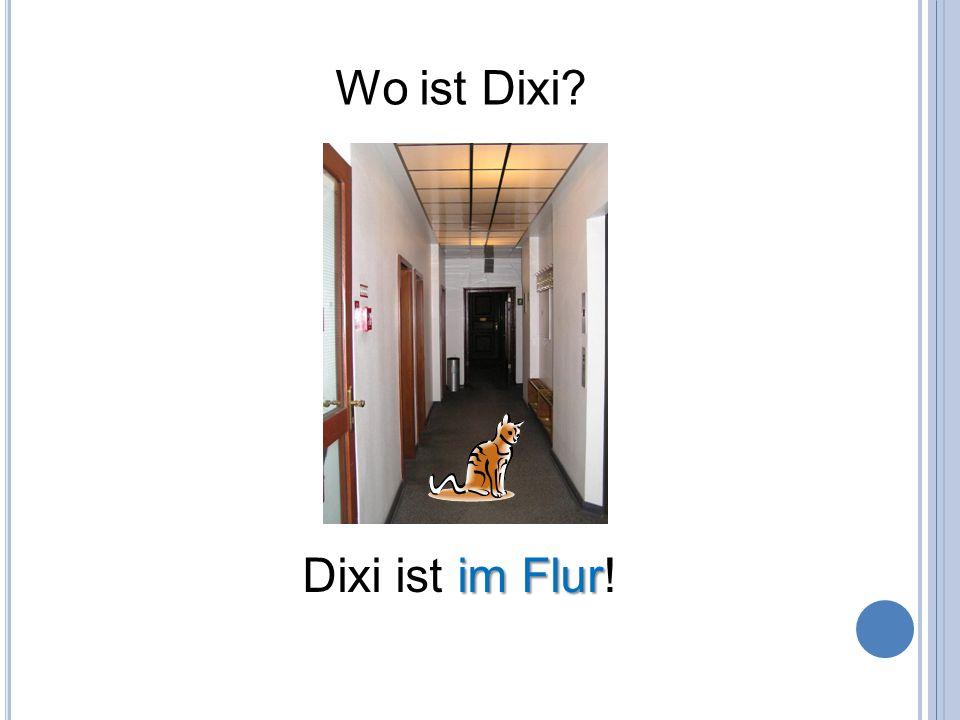 Wo ist Dixi? im Flur Dixi ist im Flur!
