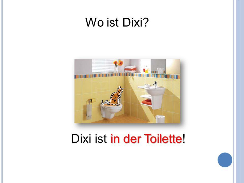 Wo ist Dixi? in der Toilette Dixi ist in der Toilette!