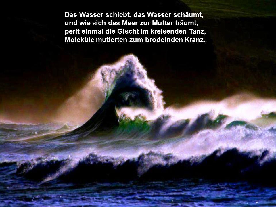 Das Ur-Meer wogte, dämmrigen Tags, im zeitlosen Gleichklang des Wellenschlags.