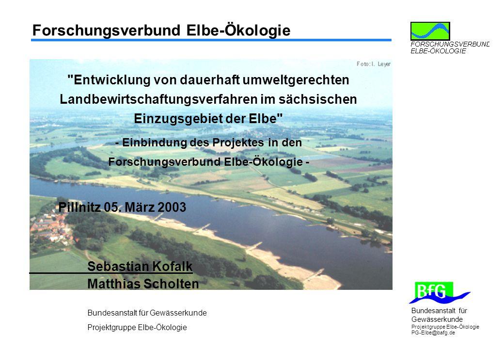 Bundesanstalt für Gewässerkunde Projektgruppe Elbe-Ökologie PG-Elbe@bafg.de Forschungsverbund Elbe-Ökologie