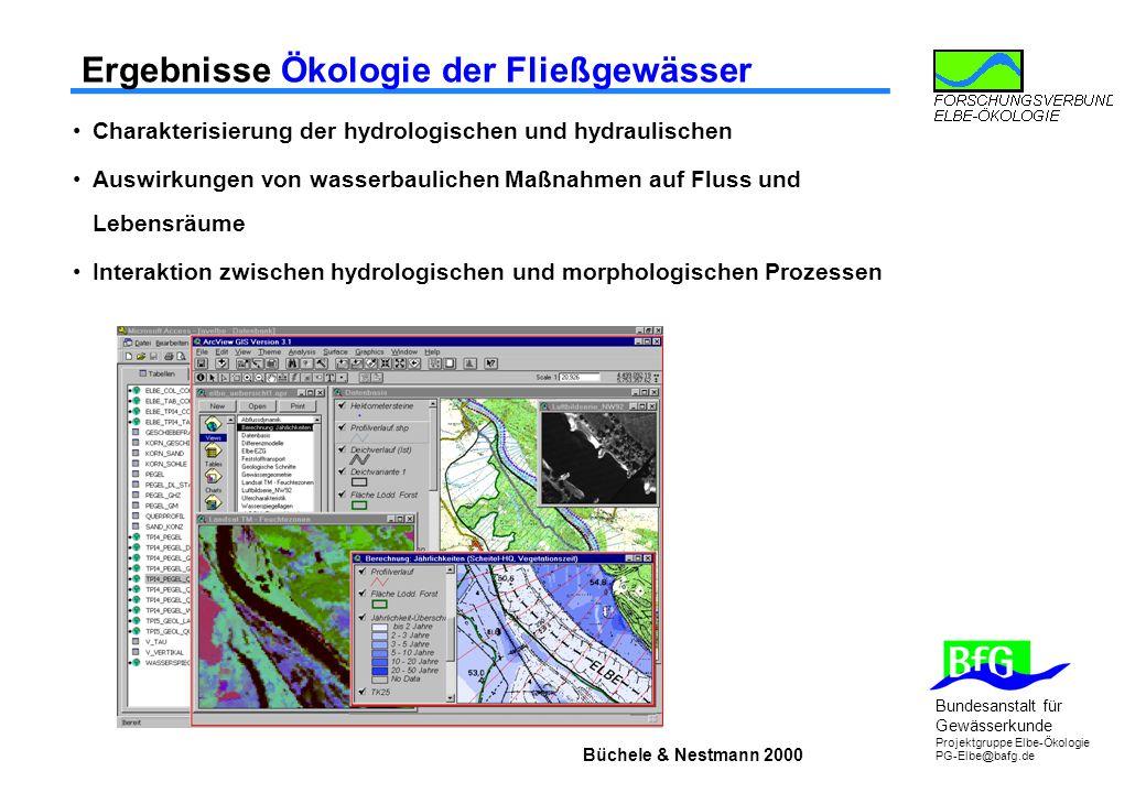 Bundesanstalt für Gewässerkunde Projektgruppe Elbe-Ökologie PG-Elbe@bafg.de Ergebnisse Ökologie der Fließgewässer Charakterisierung der hydrologischen