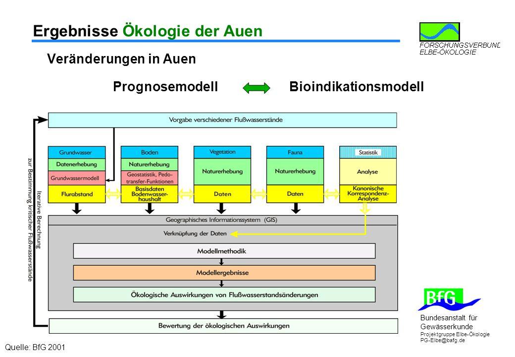 Bundesanstalt für Gewässerkunde Projektgruppe Elbe-Ökologie PG-Elbe@bafg.de Ergebnisse Ökologie der Auen Veränderungen in Auen Prognosemodell Bioindikationsmodell Quelle: BfG 2001