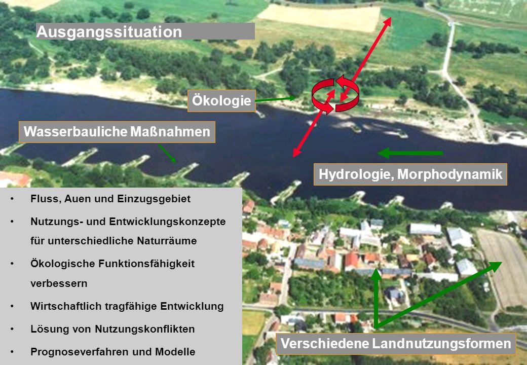 Bundesanstalt für Gewässerkunde Projektgruppe Elbe-Ökologie PG-Elbe@bafg.de Verschiedene Landnutzungsformen Hydrologie, Morphodynamik Wasserbauliche M
