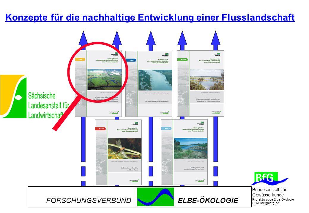 Bundesanstalt für Gewässerkunde Projektgruppe Elbe-Ökologie PG-Elbe@bafg.de Konzepte für die nachhaltige Entwicklung einer Flusslandschaft FORSCHUNGSVERBUNDELBE-ÖKOLOGIE