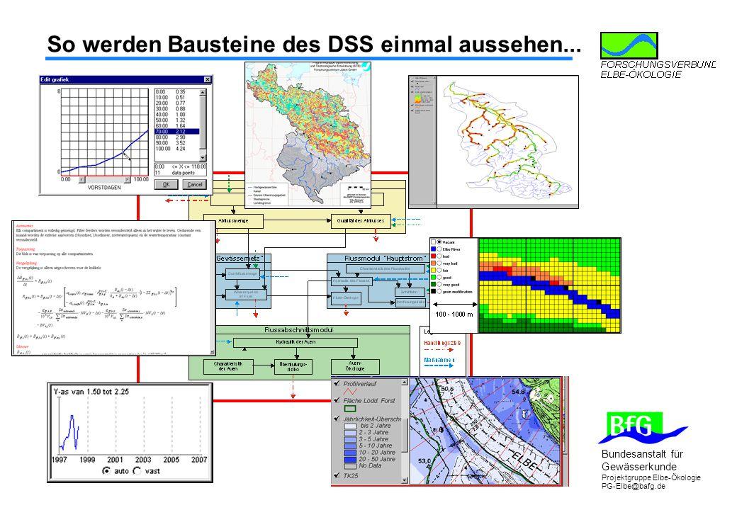 Bundesanstalt für Gewässerkunde Projektgruppe Elbe-Ökologie PG-Elbe@bafg.de So werden Bausteine des DSS einmal aussehen...