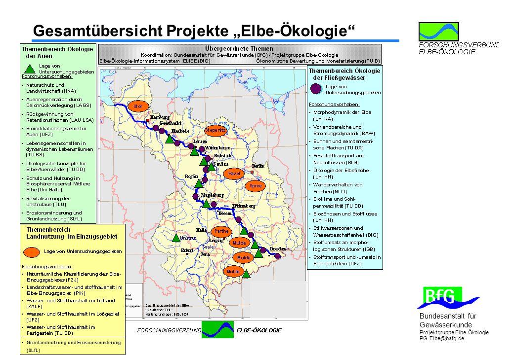 """Bundesanstalt für Gewässerkunde Projektgruppe Elbe-Ökologie PG-Elbe@bafg.de Gesamtübersicht Projekte """"Elbe-Ökologie Grünlandnutzung und Erosionsminderung (SLfL)"""