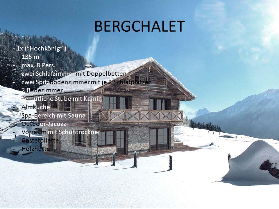 BERGCHALET - 1x ( Hochkönig ) -135 m² -max. 8 Pers.